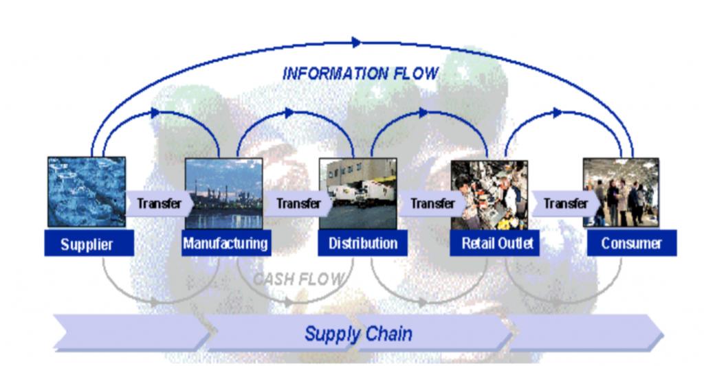 Information Flow in ERP