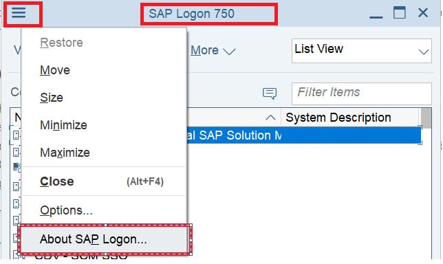 How do I find my SAP GUI version