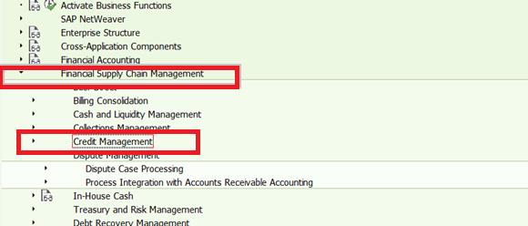 sap fscm credit management configuration
